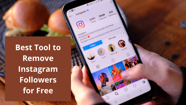 Best Tool to Remove Instagram Followers for Free
